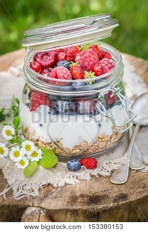Tasty Granola And Yogurt Decorated With Flowers