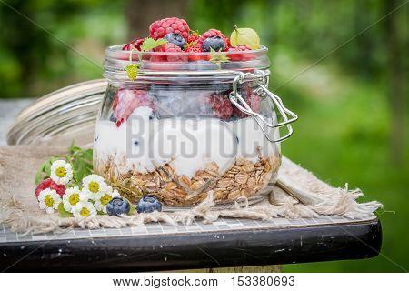 Muesli With Yogurt And Berry Fruits In Garden