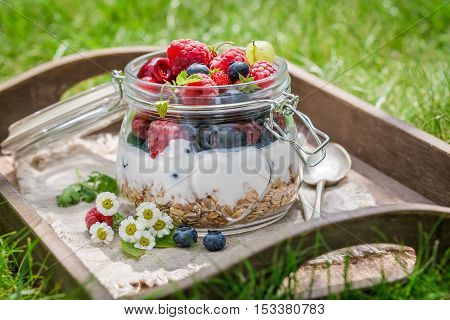 Muesli With Yogurt And Berry Fruits In Sunny Day