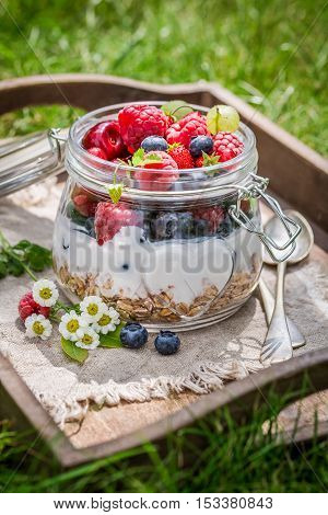Berry Fruits And Yogurt With Granola In Garden