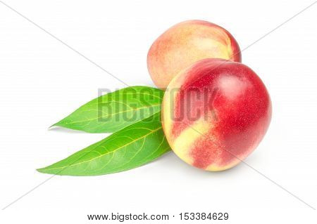 two nectarines with green leaves isolated on a white background.