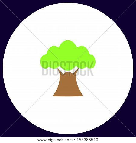 Baobab Simple vector button. Illustration symbol. Color flat icon