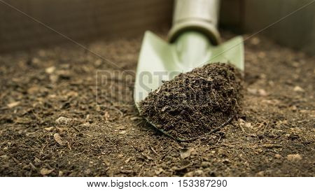 Agriculture and soil concept : close up organic soil on green shovel ready for plant a tree