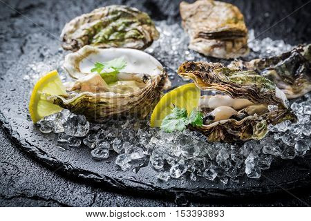 Tasty oysters on ice with lemon and black rock