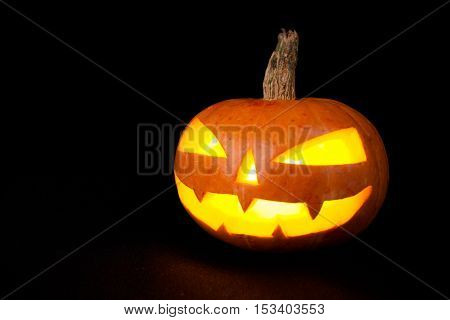 Halloween Pumpkin on dark background. Studio shot