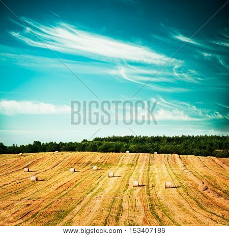 Beautiful Summer Farm Scenery with Haystacks. Landscape with Harvested Field, Rolls and Sky. Agriculture Concept. Toned and Filtered Cross Processed Photo with Copyspace.