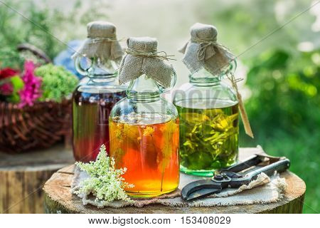 Healing Tincture In Bottles As Natural Medicine In Garden