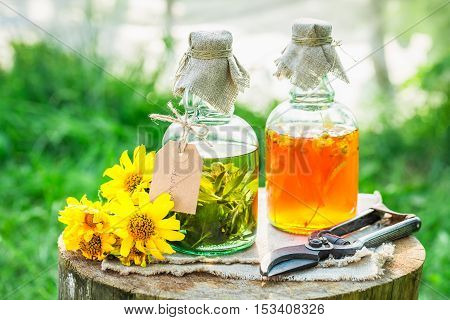 Homemade Tincture Made Of Alcohol And Honey In Garden
