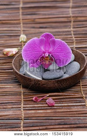 Gray stones with orchid. in bowl ,petals on mat