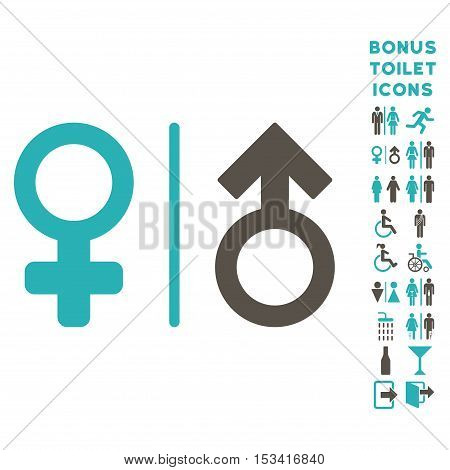 WC Gender Symbols icon and bonus man and lady lavatory symbols. Vector illustration style is flat iconic bicolor symbols, grey and cyan colors, white background.