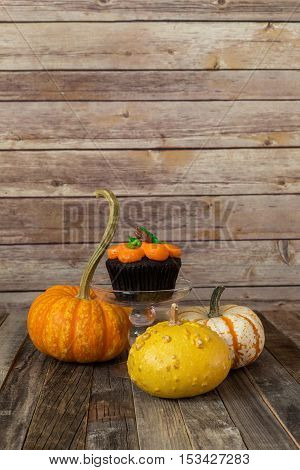 Pumpkin cupcake with decorative fall gourds on wooden backdrop