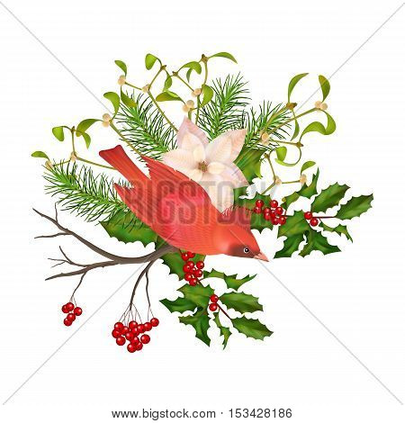 Christmas vector decorative composition. Bird poinsettia flowers with Rowan and Holly branch on a white background