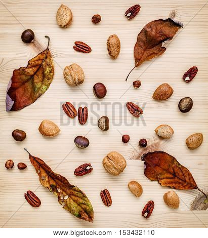 Different Kinds Of Nuts Walnuts Kernels ,hazelnuts, Almond Kernels And Pecan With Dried Orange Leave
