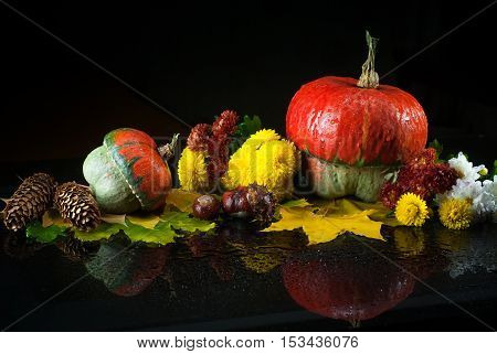 Autumn still life with pumpkins, chrysanthemums, fir cones and chestnuts, and yellow maple leaves on a dark background with mirror reflection and water drops. Images for backgrounds and printed materials.