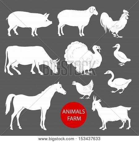 set of farm animals cow, sheep, goat, pig, horse. Set of detailed quality silhouettes of chicken, rooster, goose, turkey, duck.