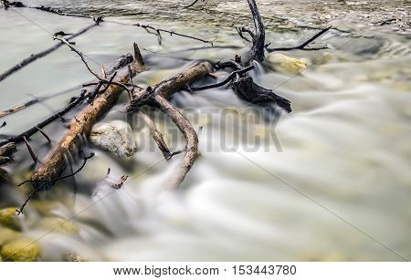 Running water with stuck dead trees in the stream.