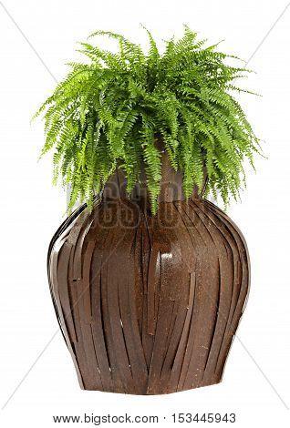 Interesting Bulbous Wooden Flower Box