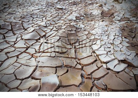 landscape of Cracked land texture for background