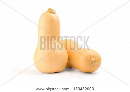 butternut squashes  isolated on white background cutout