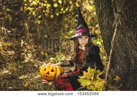 Happy Halloween. Cute little witch with a pumpkin in the hands. Beautiful young child girl in witch costume outdoors.