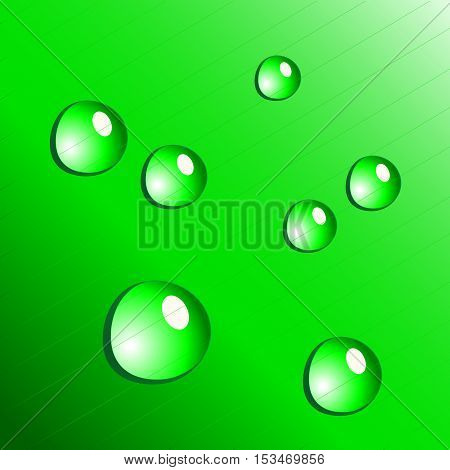 Vector water drops on green background - illustration