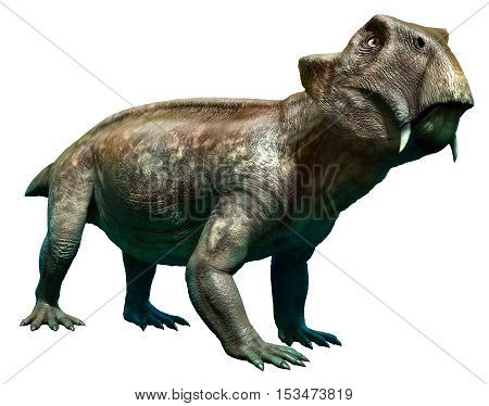 Lystrosaurus from the Permian and Triassic eras 3D illustration