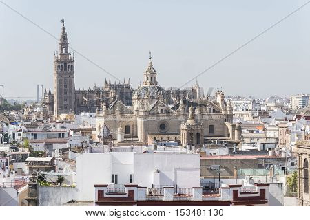 Collegiate Church of the Divine Savior Seville Cathedral and Giralda Seville Spain. Iglesia colegial del divino Salvador Catedral de Sevilla y Giralda Sevilla España