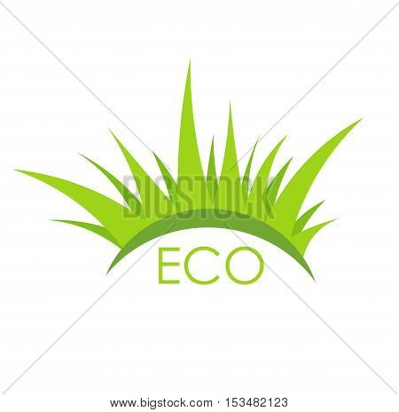 Eco plant grass symbol. Flat design illustration