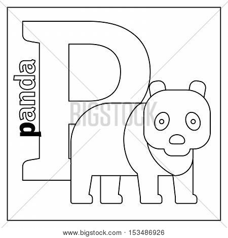 Coloring page or card for kids with English animals zoo alphabet. Panda, letter P vector illustration