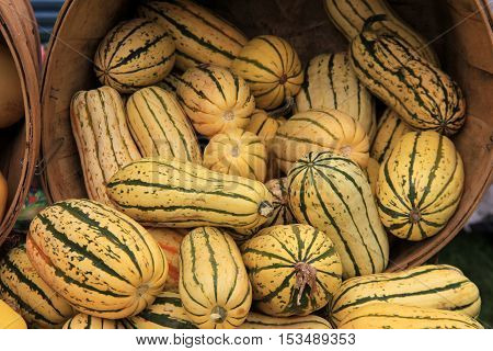 Wood baskets filled with colorful Fall squash.