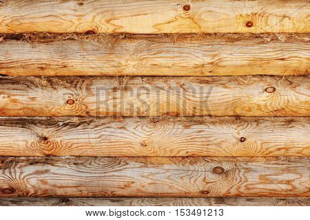Light brown pine wood logs background. Closeup.