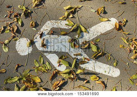 Pedestrian crossing sign on asphalt with fallen leaves.