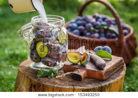 Adding Sugar Into Jar With Plums For Compote