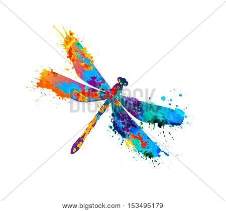 Vector dragonfly of rainbow watercolor splash paint
