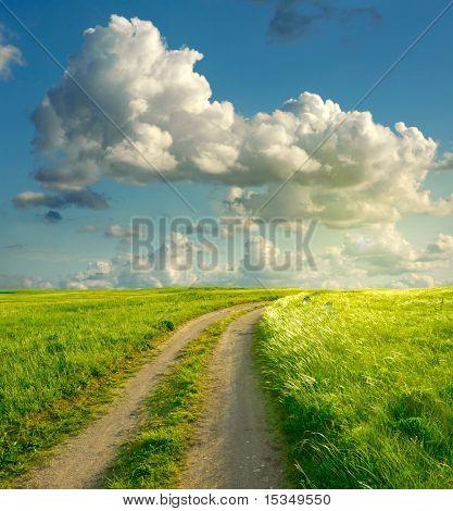 Paisaje de verano con hierba verde, carretera y nubes