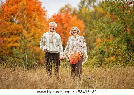 Beautiful happy elderly couple walking in the autumn park
