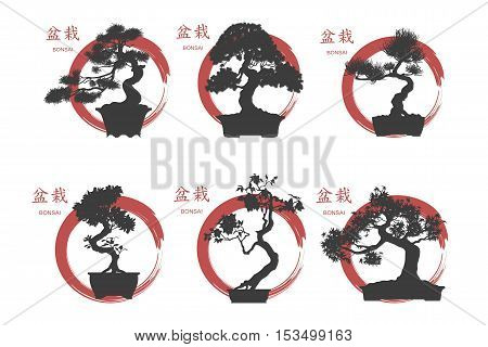 Bonsai set. Black silhouette of a bonsai on a white background. Detailed image. Vector illustration