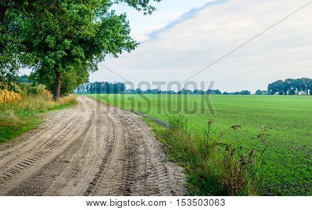 Curved sandy path with tire tracks in a rural landscape on an early morning of a day in the beginning of the fall season.