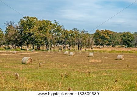 Round bales of hay in a field in Oklahoma.