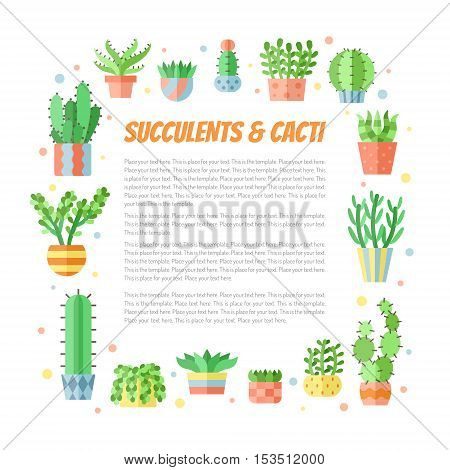 Succulents and cacti flat style multicolored square frame vector illustration with place for your text.