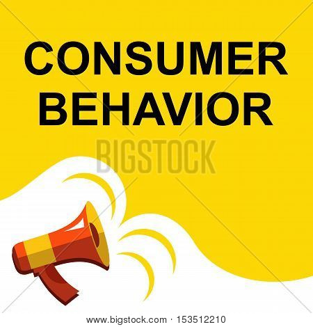Megaphone With Consumer Behavior Announcement. Flat Style Illustration