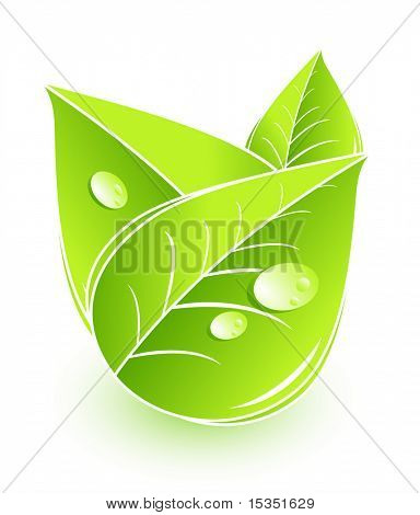 Conceptual symbol. Leaves