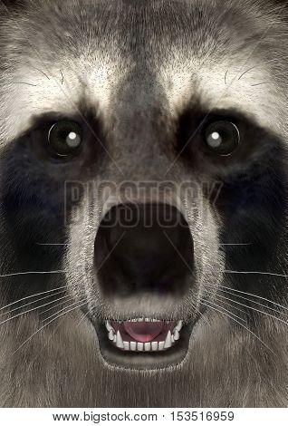 3D Rendering Raccoon