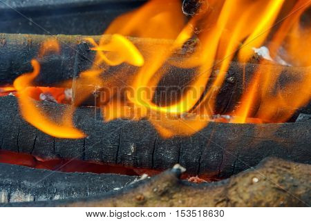 Wood Fire Close-up