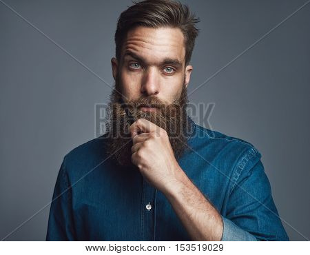 Single serious young European adult male in blue denim buttoned shirt holding his beard with blank stare over gray background