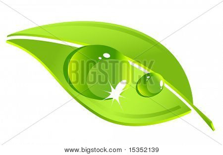 Vector leaf