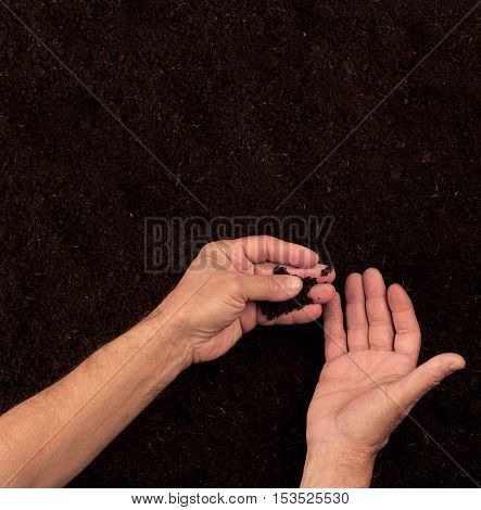 Top view of farmer hands checking the soil on dark ground background