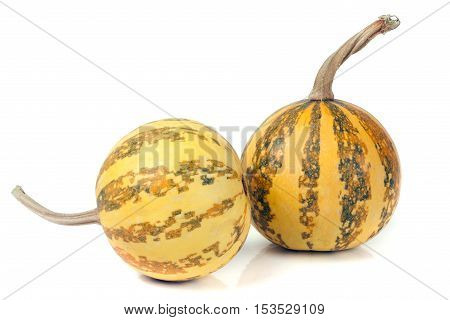 two striped decorative pumpkins isolated on white background.