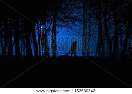 Murder in the park. Maniac drags his dead victim. Maniac kills his victim in the night deserted park. Silhouettes in night foggy forest