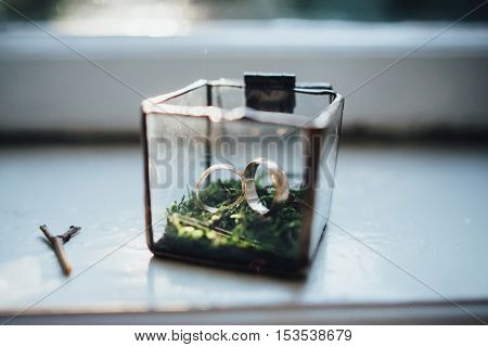Golden wedding rings in a glass box